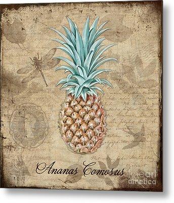 Pineapple, Ananas Comosus Vintage Botanicals Collection Metal Print