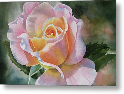 Pink And Peach Rose Bud Metal Print