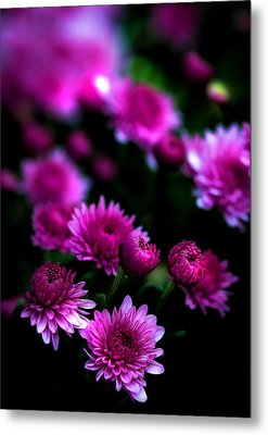 Metal Print featuring the photograph Pink Beauty by Cherie Duran