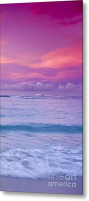 Pink Bliss -  Part 3 Of 3 Metal Print