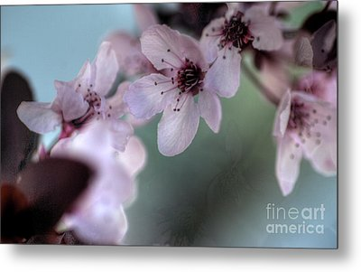 Metal Print featuring the photograph Pink Blossoms by Jim and Emily Bush
