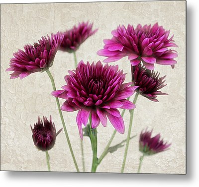 Pink Bouquet Metal Print by Judy Vincent
