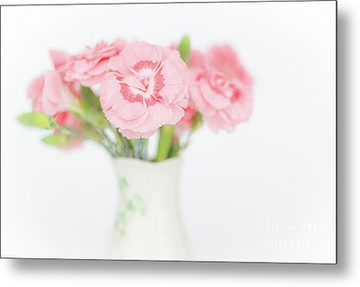 Pink Carnations 2 Metal Print by Steve Purnell