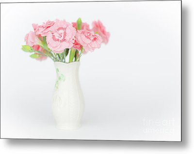 Pink Carnations 3 Metal Print by Steve Purnell