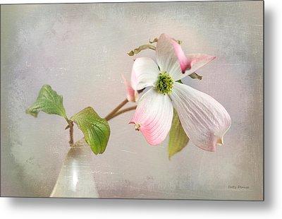 Pink Cornus Kousa Dogwood Blossom Metal Print