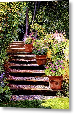 Pink Daisies Wooden Steps Metal Print by David Lloyd Glover