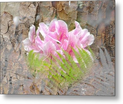 Pink Flower Bark Metal Print