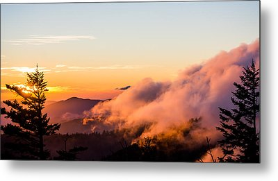 Pink Fog At Clingmans Dome Metal Print by Shelby Young