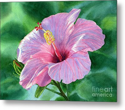Pink Hibiscus Flower With Leafy Background Metal Print