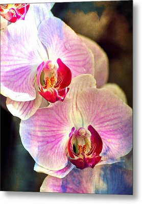 Pink In A Row Metal Print by Marty Koch