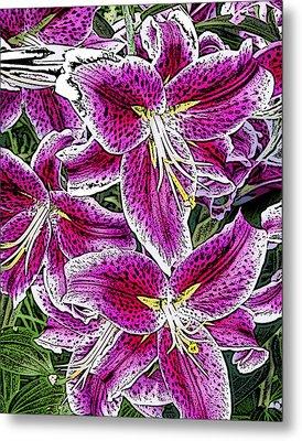 Pink Lillies Metal Print by Ann Tracy