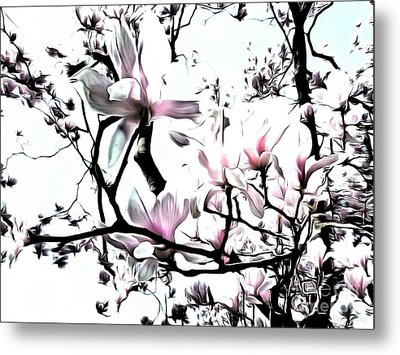 Metal Print featuring the photograph Pink Magnolia - In Black And White  by Janine Riley