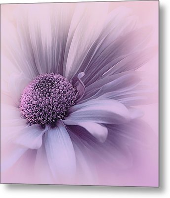 Metal Print featuring the photograph Pink Mist by Darlene Kwiatkowski