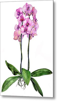 Metal Print featuring the painting Pink Orchids by Heidi Kriel