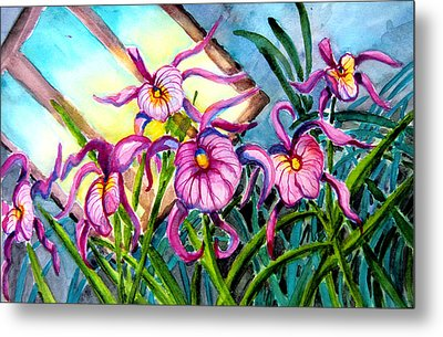 Pink Orchids Under Skylight Metal Print by Helen Kern