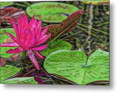 Pink Passion Waterlily Artistic Rendering Metal Print by Photo Captures by Jeffery