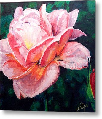 Metal Print featuring the painting Pink Rose by Jim Phillips