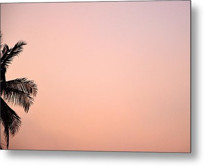 Pink Skies Metal Print by Corinne Rhode