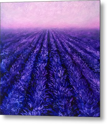 Pink Skies - Lavender Fields Metal Print by Karen Whitworth
