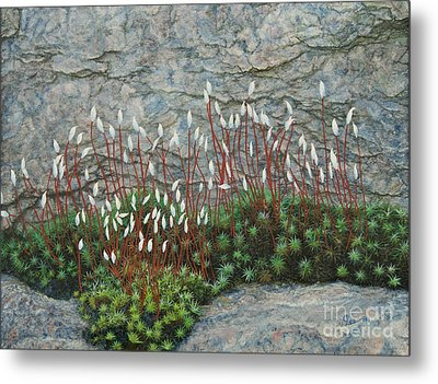 Metal Print featuring the painting Pink Stony Creek Granite Still Life Study by Cindy Lee Longhini
