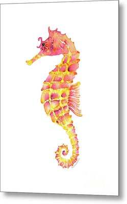 Pink Yellow Seahorse Metal Print by Amy Kirkpatrick