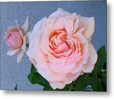 Metal Print featuring the photograph Pinkie by Fred Wilson