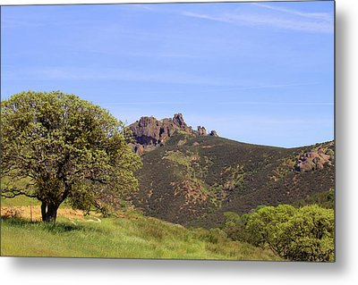 Metal Print featuring the photograph Pinnacles Vista by Art Block Collections