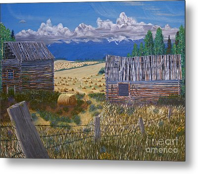 Pioneer Homestead Metal Print by Stanza Widen