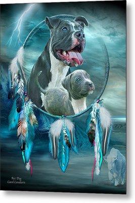 Pit Bulls - Rez Dog Metal Print