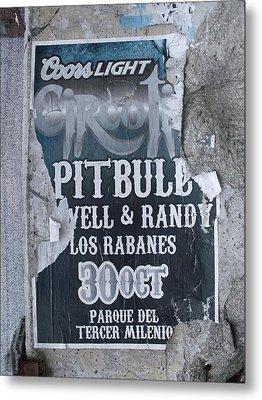 Pitbull Metal Print by Anna Villarreal Garbis