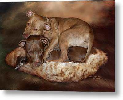 Pitbulls - The Softer Side Metal Print by Carol Cavalaris