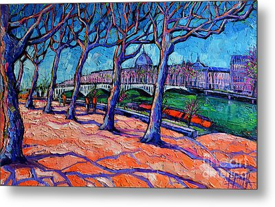 Plane Trees Along The Rhone River - Spring In Lyon Metal Print by Mona Edulesco