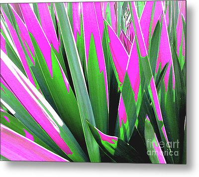 Metal Print featuring the photograph Plant Burst - Pink by Rebecca Harman