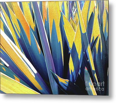 Metal Print featuring the photograph Plant Burst - Yellow by Rebecca Harman