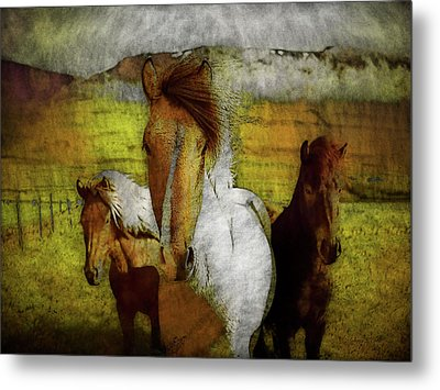 Metal Print featuring the photograph Plateau Ponies by Bellesouth Studio