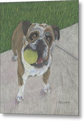 Play With Me Metal Print by Arlene Crafton