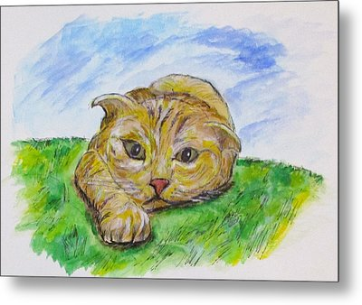 Play With Me Metal Print by Clyde J Kell