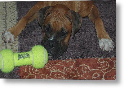 Please Play With Me Metal Print by DigiArt Diaries by Vicky B Fuller