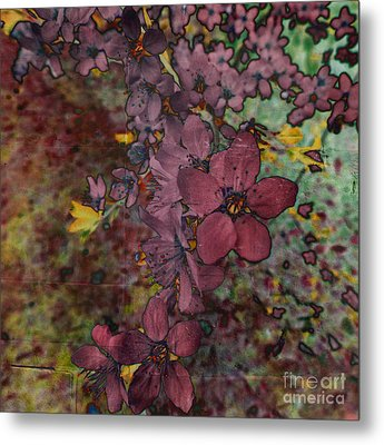 Metal Print featuring the photograph Plum Blossom by LemonArt Photography