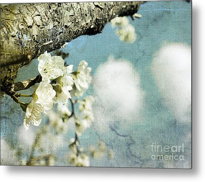 Plum Blossoms And Puffy Clouds Metal Print