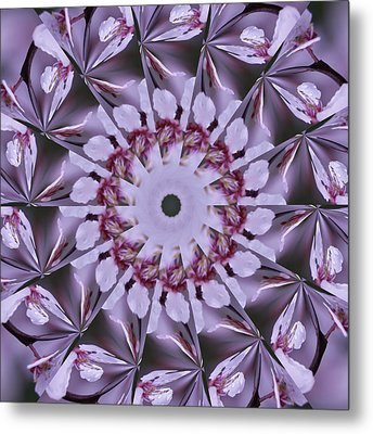 Metal Print featuring the photograph Plum Tree Kaleidoscope by Bill Barber