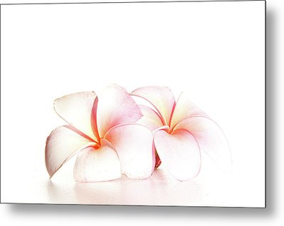 Metal Print featuring the photograph Plumeria by Roger Mullenhour