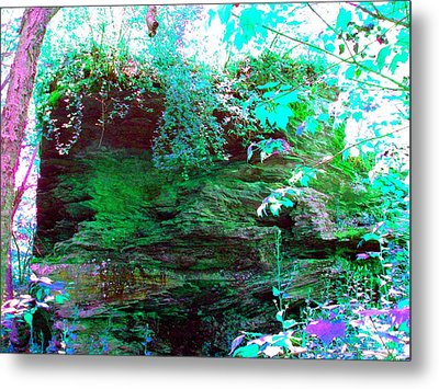 Metal Print featuring the photograph Pocono Hike by Susan Carella