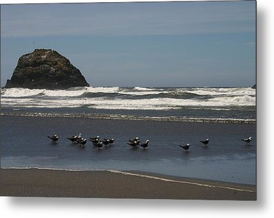 Poetry In Motion Metal Print by Marie Neder