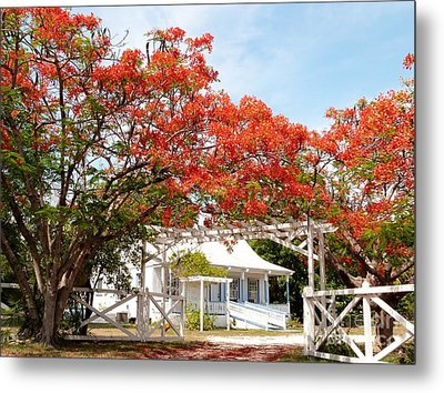 Poinciana Cottage Metal Print
