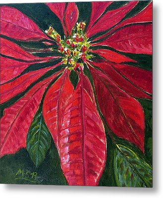 Poinsettia Closeup Metal Print by Maria Soto Robbins