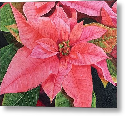 Poinsettia  Metal Print by Heather Norseth