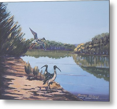 Metal Print featuring the painting Point Clare Reflections 1 by Murray McLeod