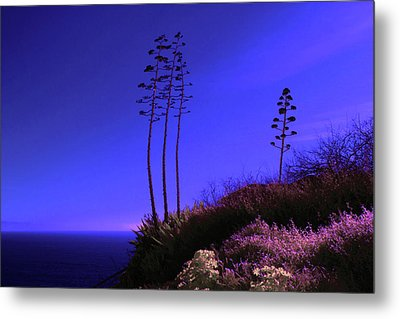 Metal Print featuring the photograph Point Fermin In Infrared by Randall Nyhof