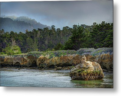 Point Lobos, Calif. Whaler's Cove Metal Print